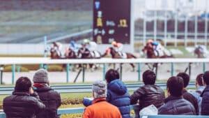 競馬の買い目に悩む初心者へ、予想するために必要な3つのポイント