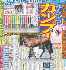 日刊スポーツ 新聞