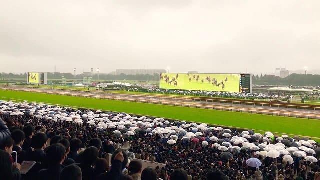 雨 競馬場