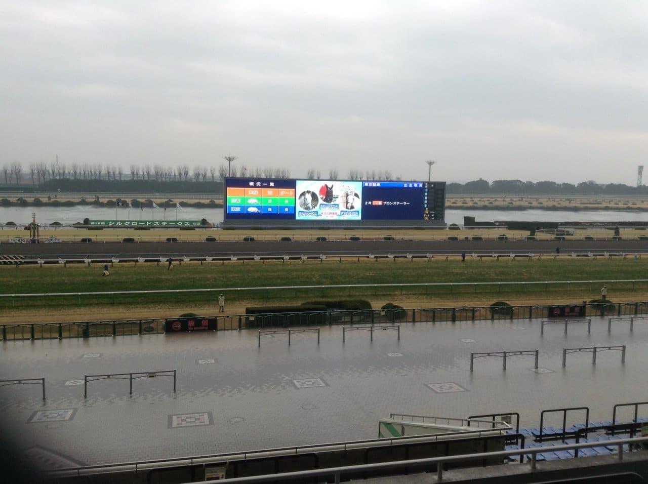 雨 レース