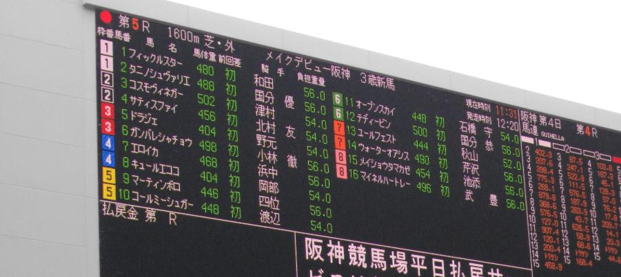 阪神競馬場 オッズ