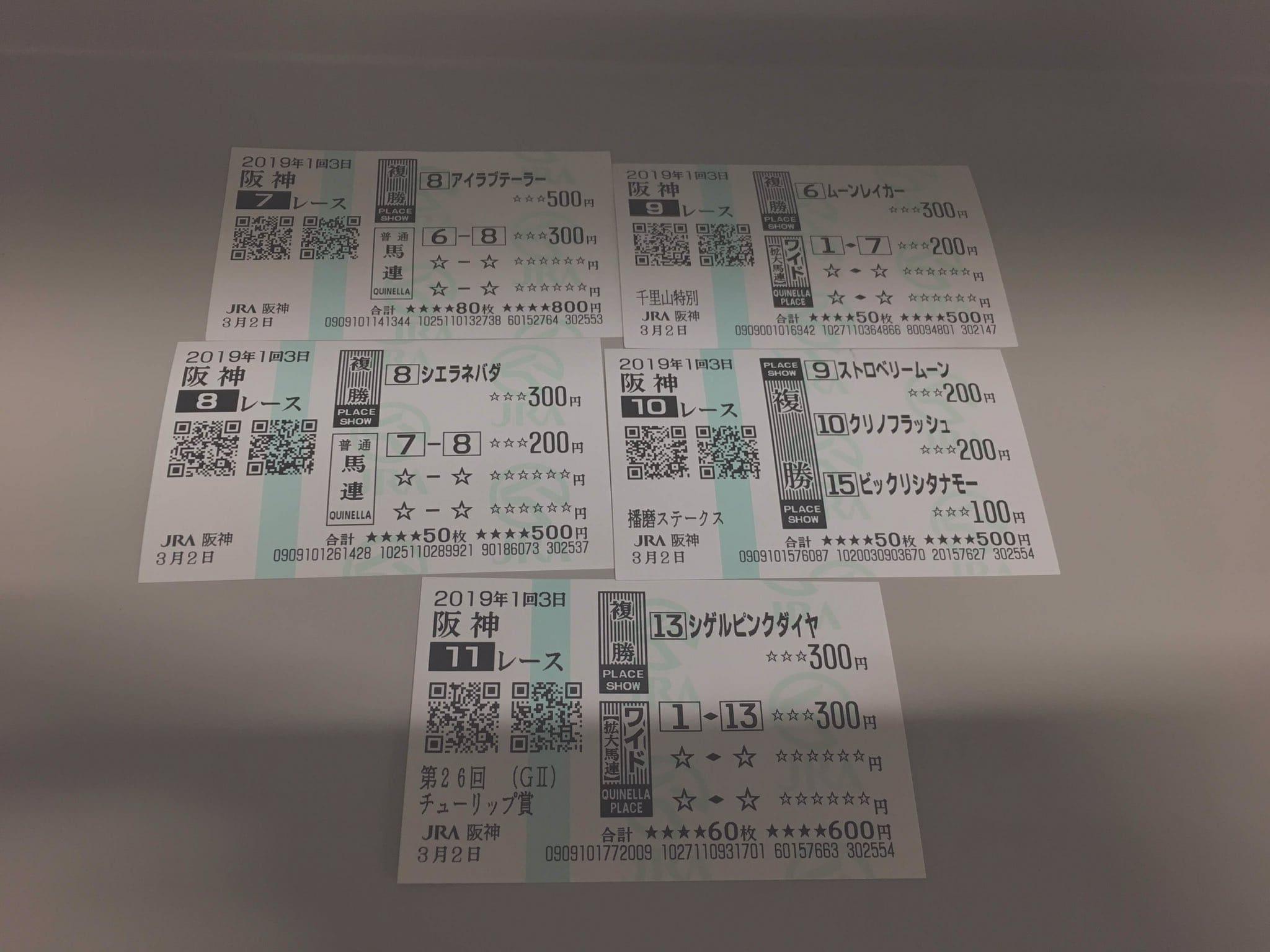 阪神競馬 馬券