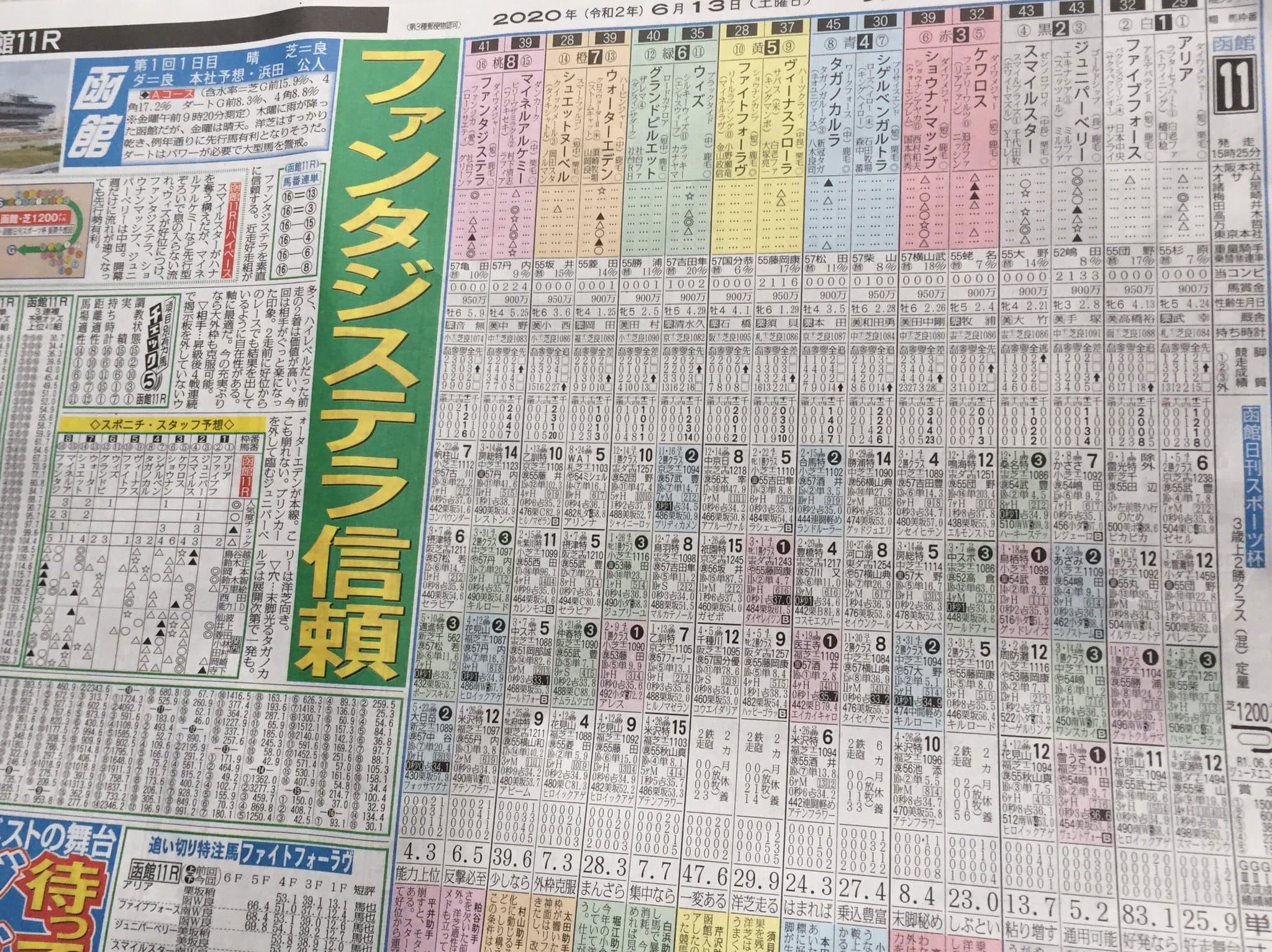 函館競馬 新聞