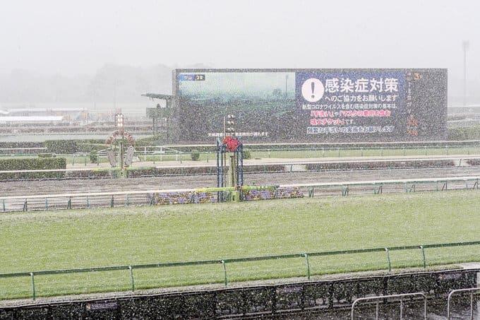 競馬場 雪