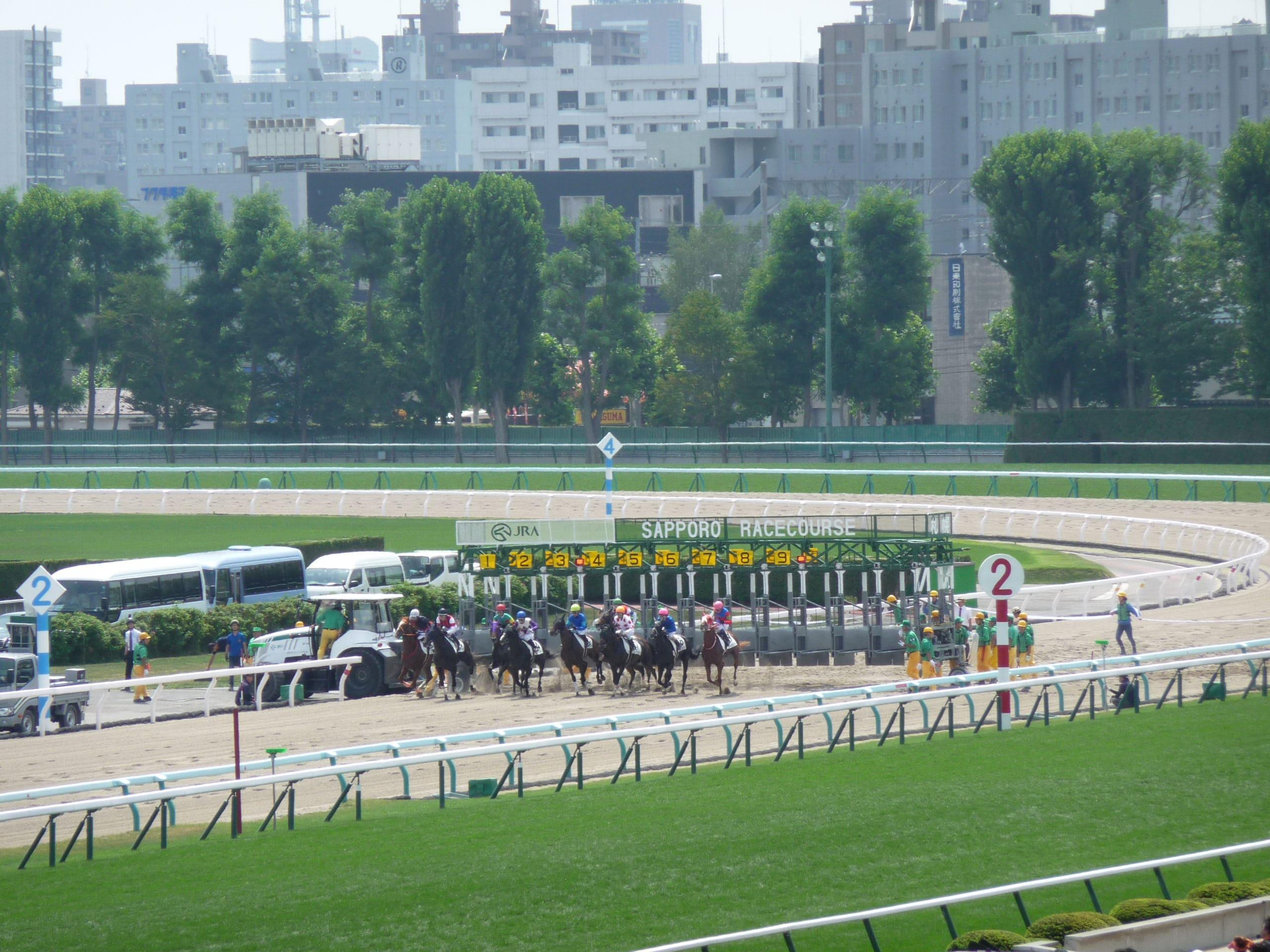 札幌競馬 ダートコース