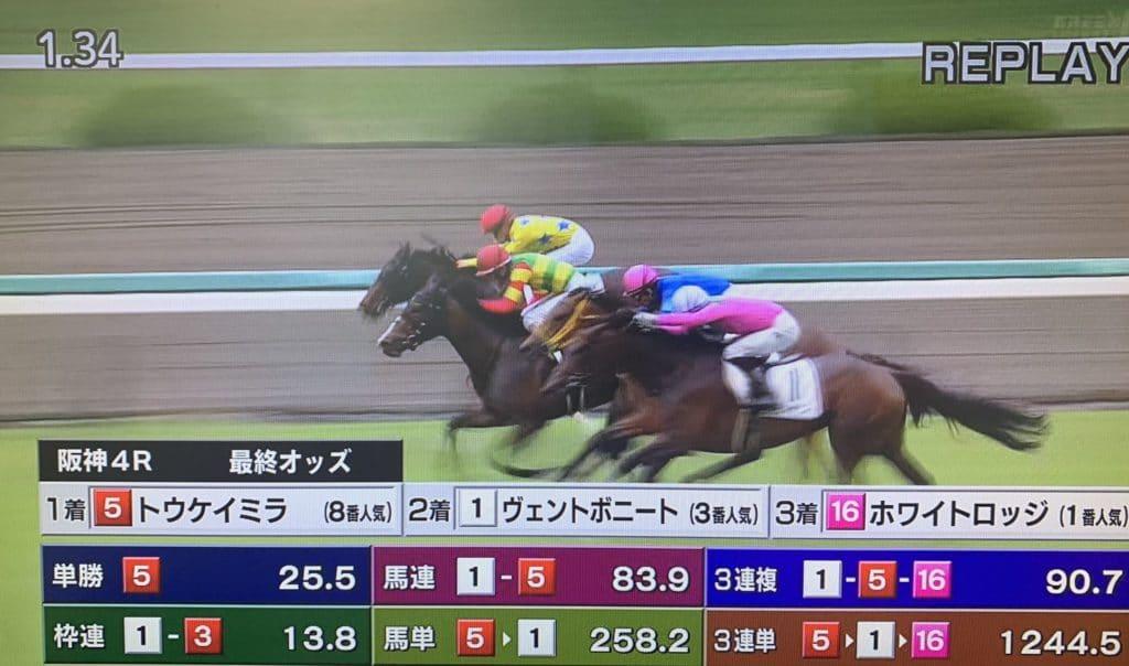 阪神競馬 リプレイ