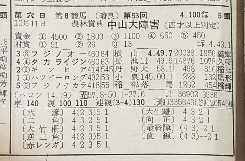 中山大障害 レース結果