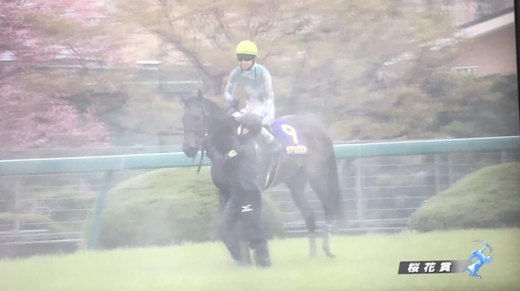 桜花賞 雨