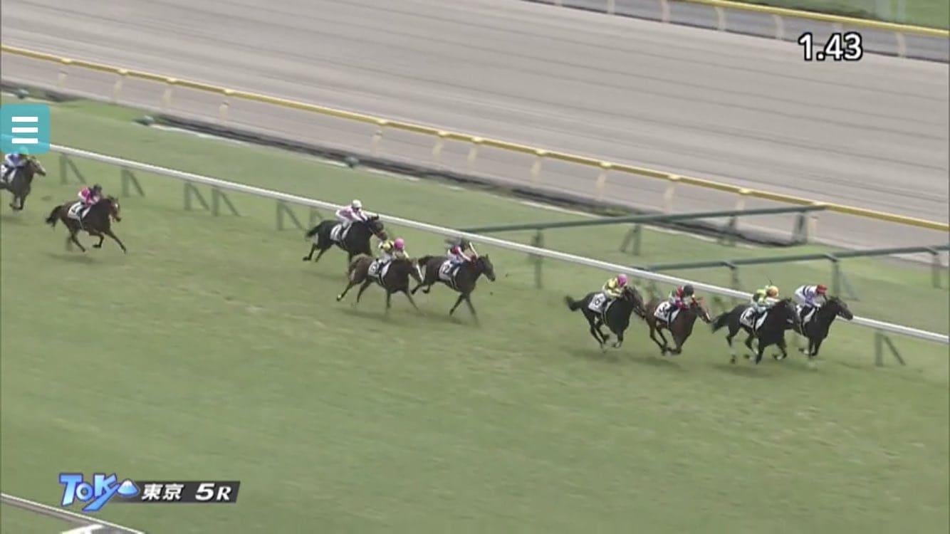東京競馬 レース