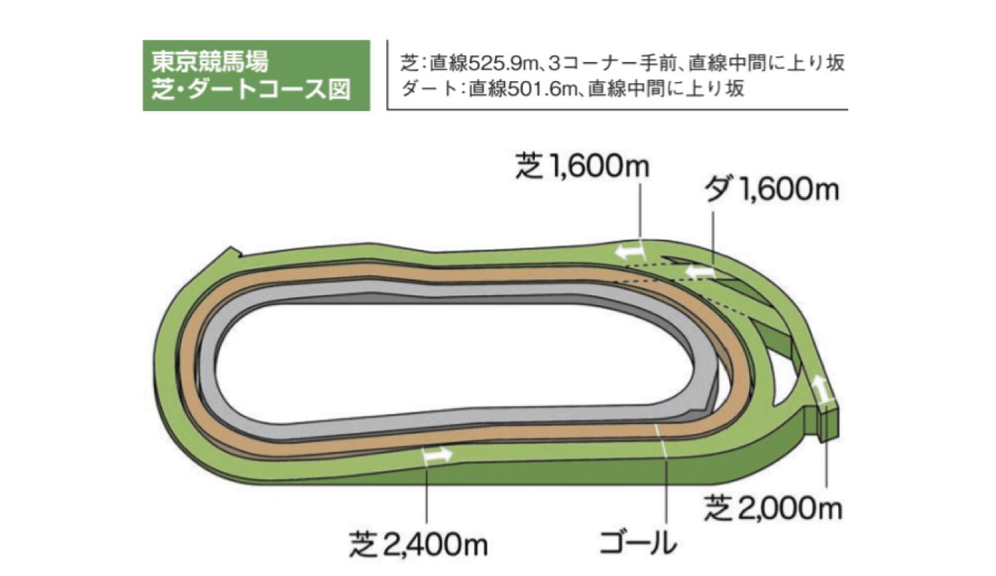 東京競馬場 コース図