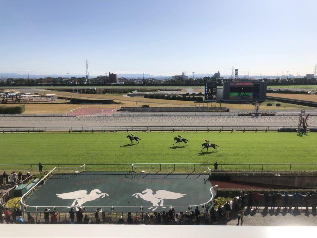 中京競馬場 レースコース