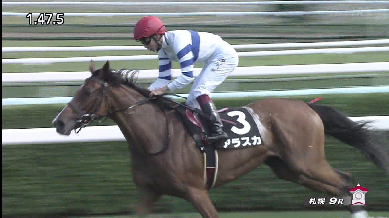 札幌競馬 競走馬