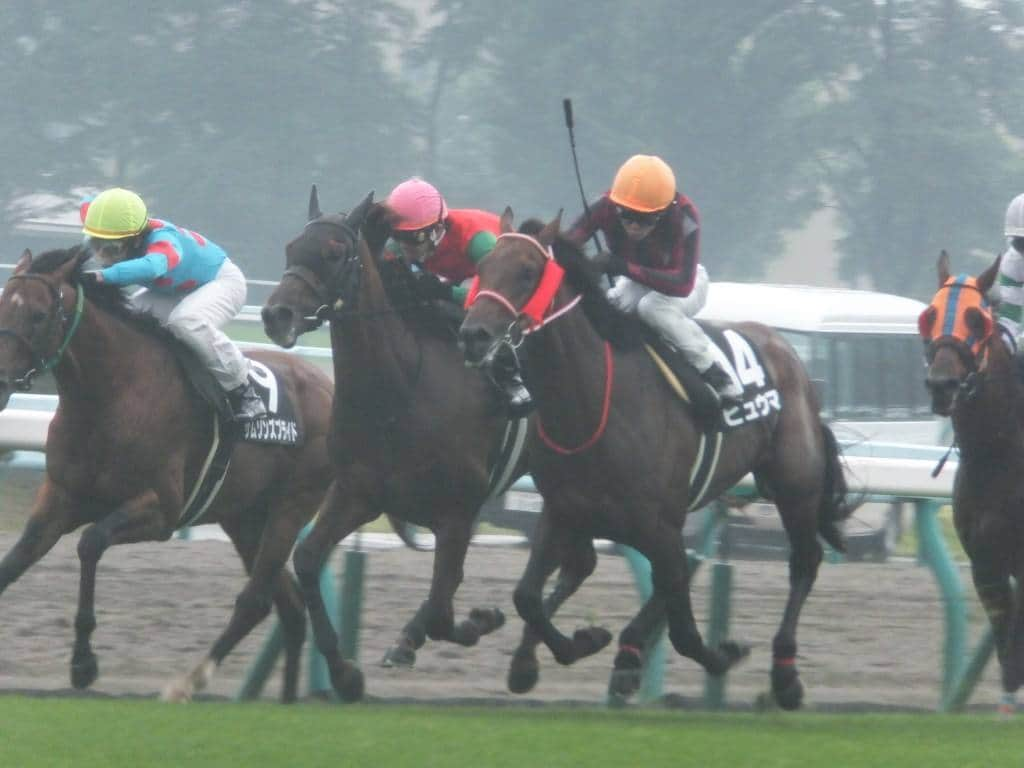 札幌競馬 雨 レース