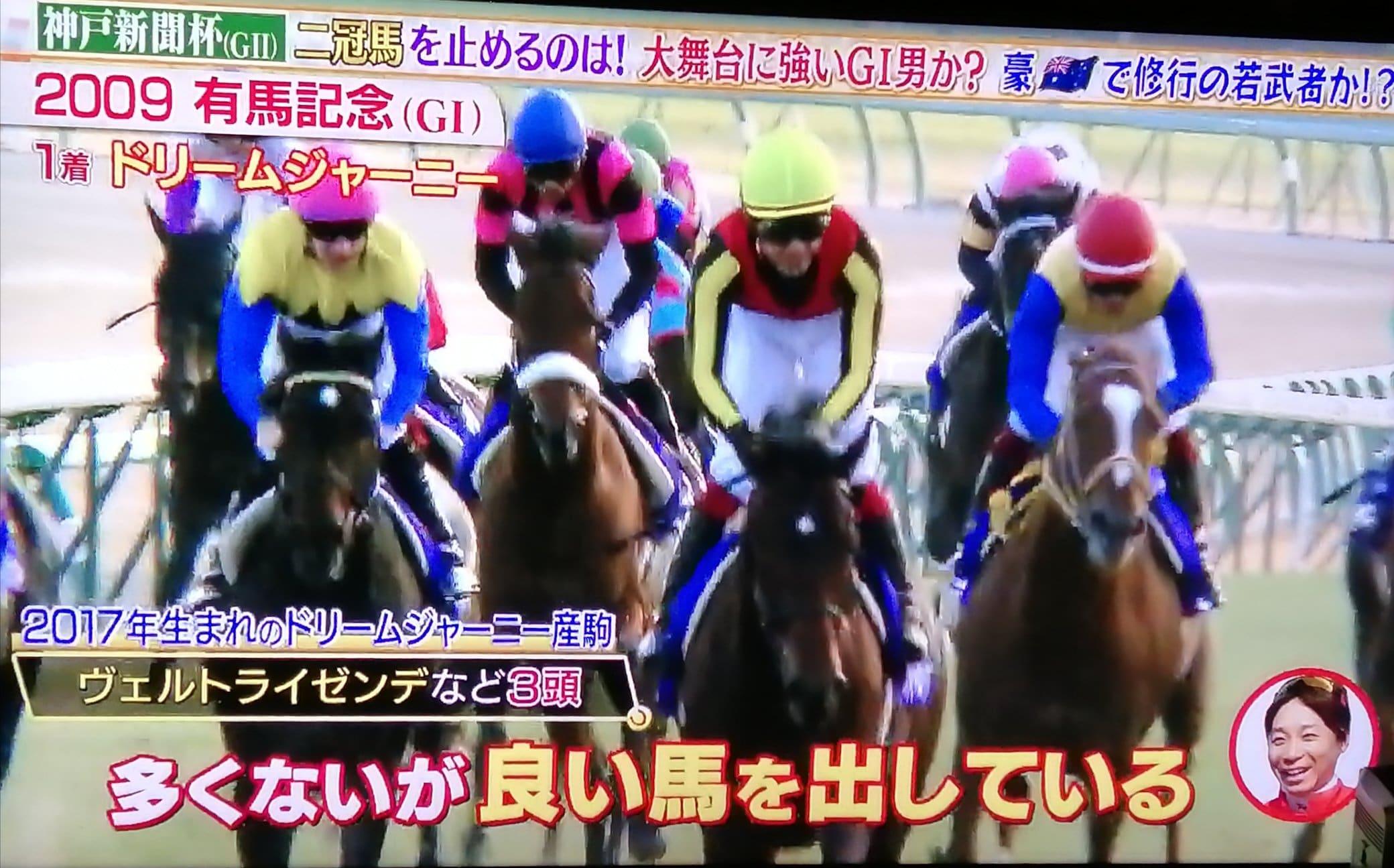 有馬記念 競馬番組