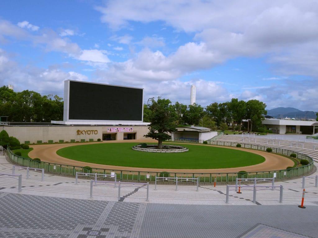 京都競馬場 パドック