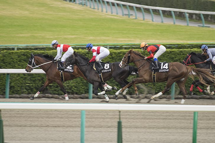 中山競馬場 レース