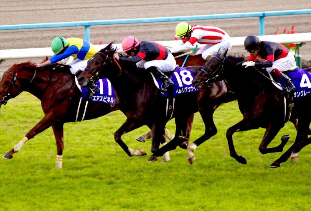 競走馬 ペルシアンナイト
