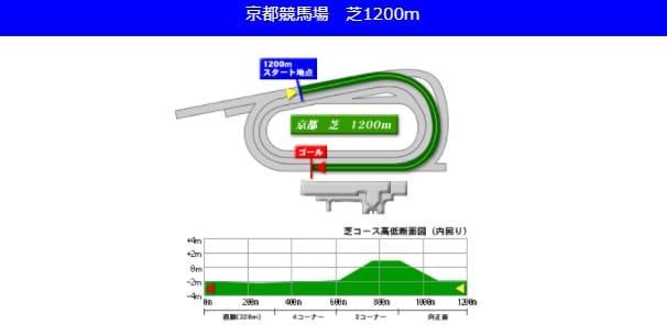京都競馬場芝1200mの予想