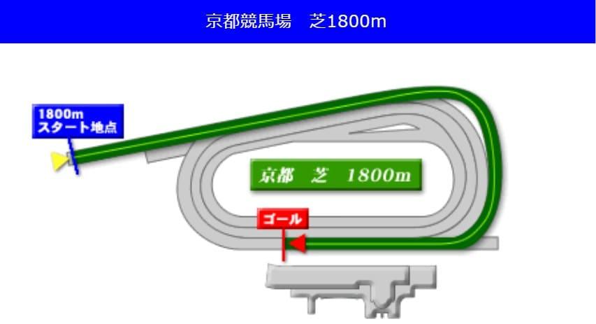 京都競馬場芝1800mの予想ポイント