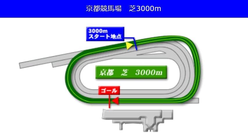 京都競馬場芝3000mの予想ポイント