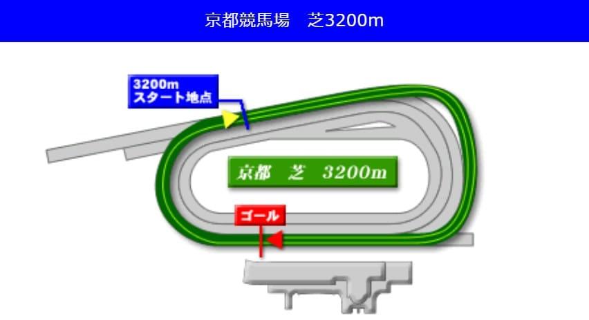 京都競馬場芝3200mの予想ポイント