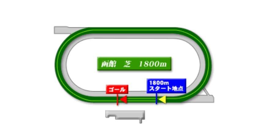 函館競馬場芝1800mの予想ポイント
