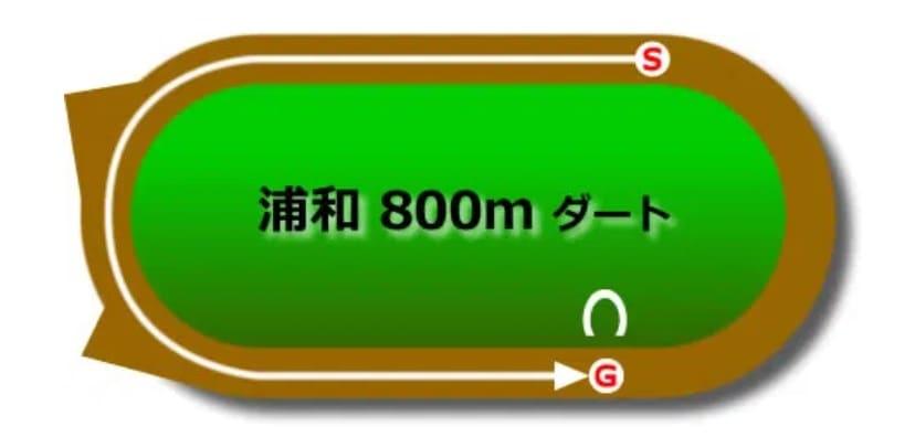 浦和競馬場ダート800mの予想ポイント