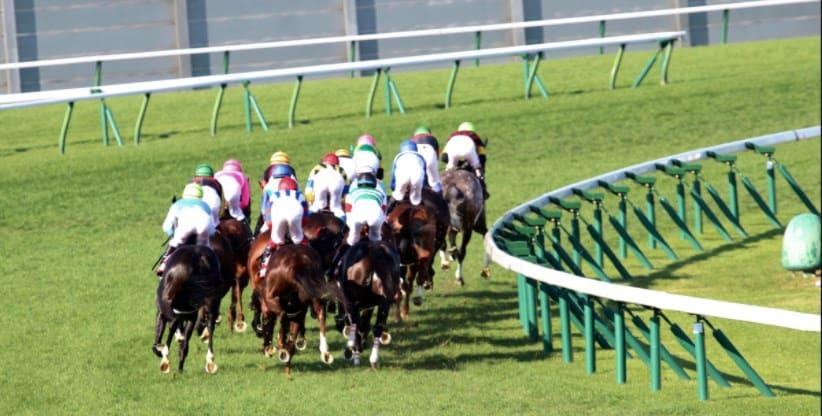 札幌 競馬 予想