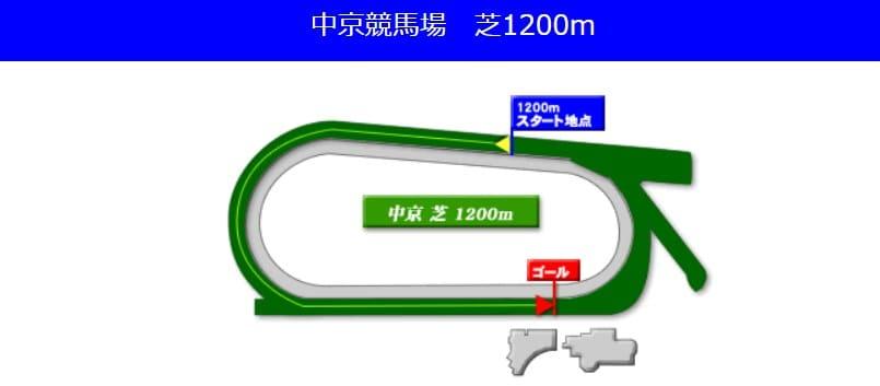 中京競馬場芝1200mの予想ポイント