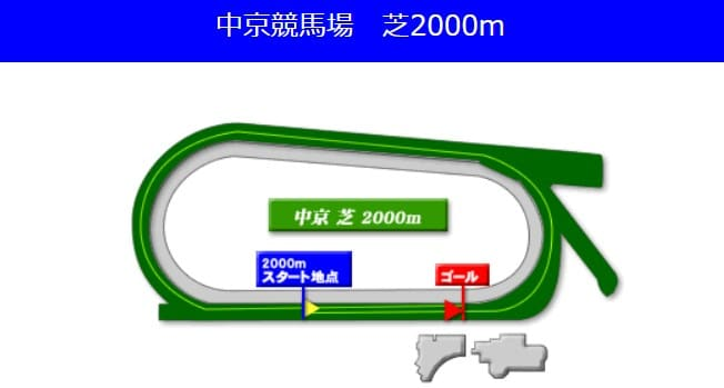 中京競馬場芝2000mの予想ポイント