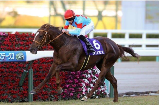 2021年大阪杯の注目馬3頭目:サリオス
