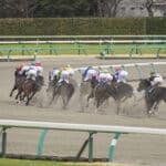 競馬予想ブログおすすめ5選【アメーバ編】