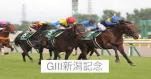 2021年新潟記念の予想と展望!函館記念王者トーセンスーリヤが夏競馬を締めくくる
