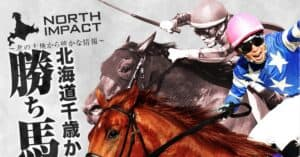 競馬予想サイト「ノースインパクト」のおすすめ度を徹底調査!