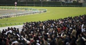 平場予想を制する者が競馬を制す!平場レース予想4つの重点!!