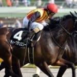 競馬で初心者が意外に使える馬券、馬単について