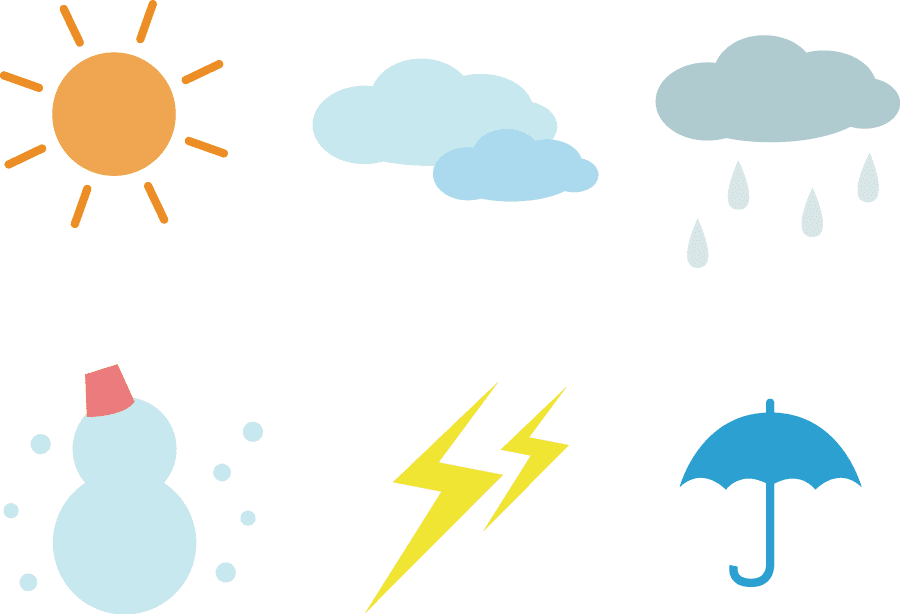 競馬 レース選び 天候