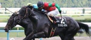 競馬の初心者がやるべき馬連の効果的な買い方