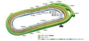 pic_course_3d (1)